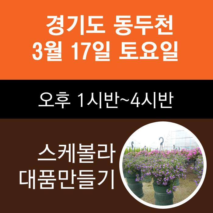 동두천클래스-3월17일 금요일 스케볼라 대품만들기